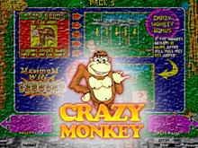 Игровой слот Crazy Monkey